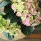 Kuvassa on vaaleanpunainen hortensia.